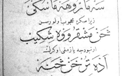 Kontributi i klerit mysliman shqiptar në hartimin e alfabeteve dhe të abetareve të gjuhës shqipe